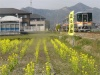 2009年4月/撮影場所:島田第3踏切北<c00p東>付近