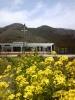 2010年3月/撮影場所:千本駅