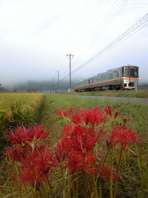 2010年9月/撮影場所:播磨徳久~三日月間