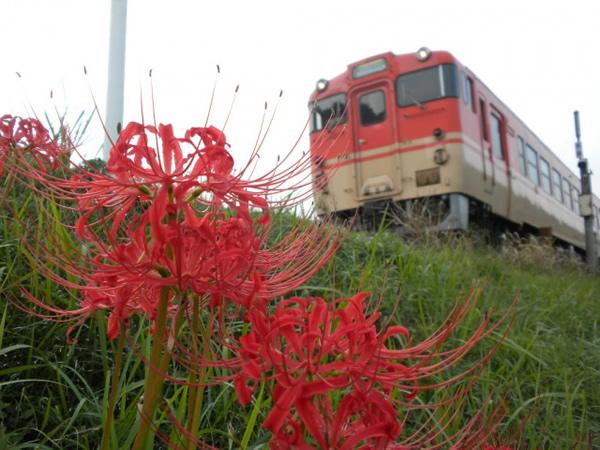 2010年10月/キハ40系