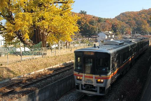 2010年11月/ 撮影場所:佐用駅付近
