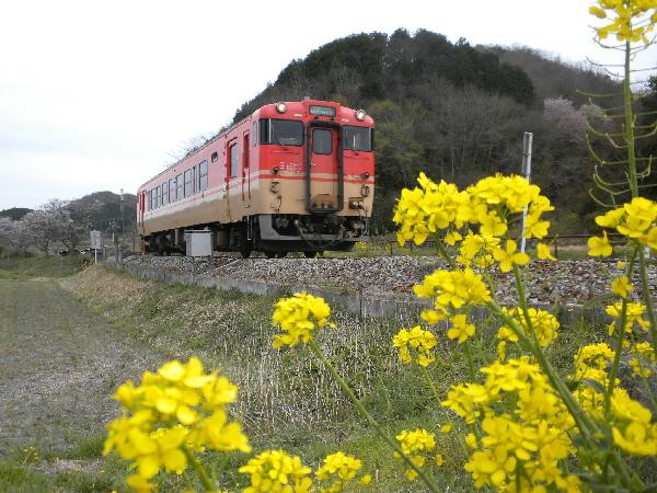2011年4月/キハ40系