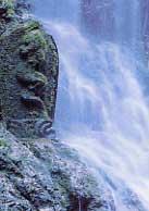 飛龍の滝 ひりゅうのたき